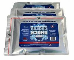 3 Cooler Shock Lg Reusable Cooler Ice Packs Replace Ice- Scr
