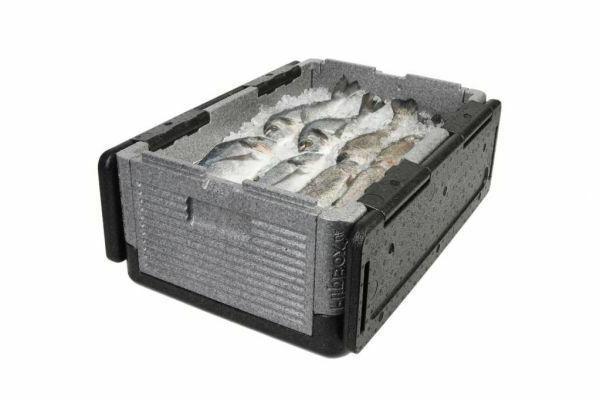Flip Box Cooler Ex-Large